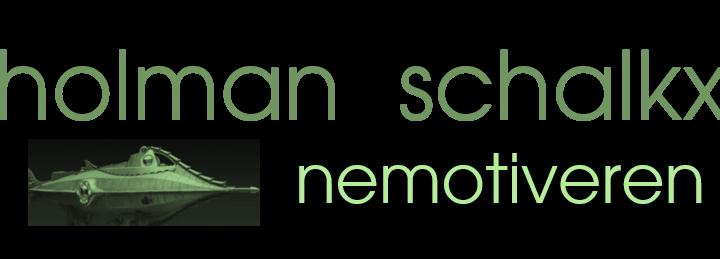 Snel nieuw zicht met Nemotiveren